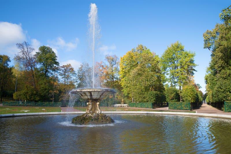 Dia de outubro na fonte da bacia no parque mais baixo de Peterhof Rússia fotografia de stock royalty free