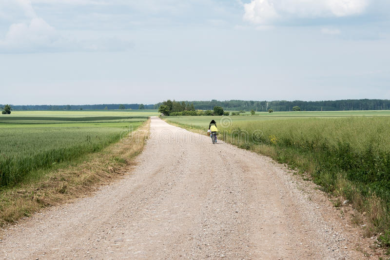 Dia de verão agradável no campo letão fotografia de stock royalty free