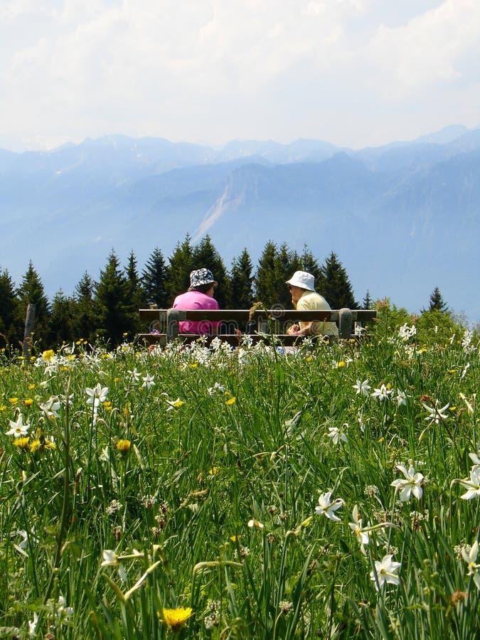 Dia de verão nas montanhas foto de stock