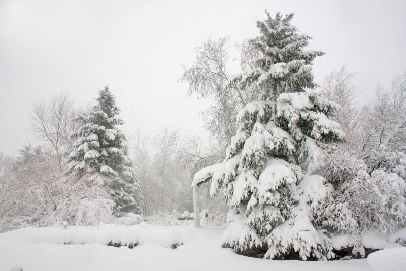 Dia do blizzard foto de stock