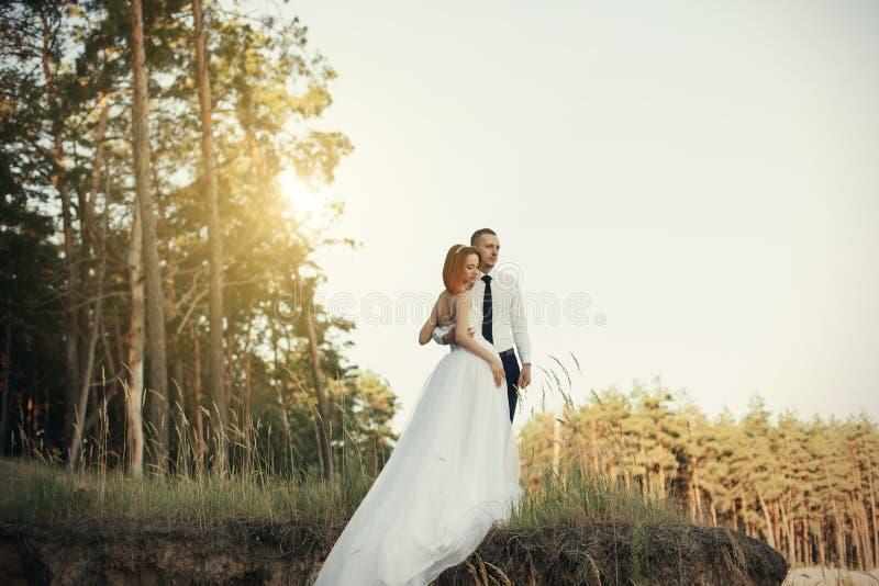 Dia do casamento O noivo abraça a noiva, par loving em uma mulher da floresta do pinho que abraça maciamente o homem imagens de stock