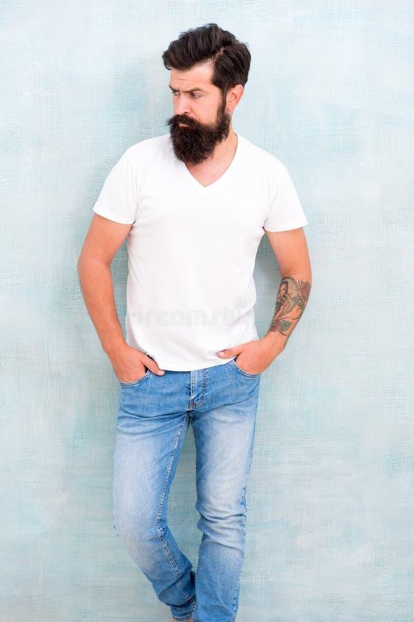 Dia a dia do estilo ocasional Simples e ocasional Conceito da masculinidade F?rma e beleza Barba bem preparado longa do moderno e fotografia de stock royalty free