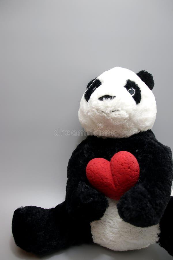 Dia do ` s de Panda Plush Doll Celebrates Valentine imagem de stock
