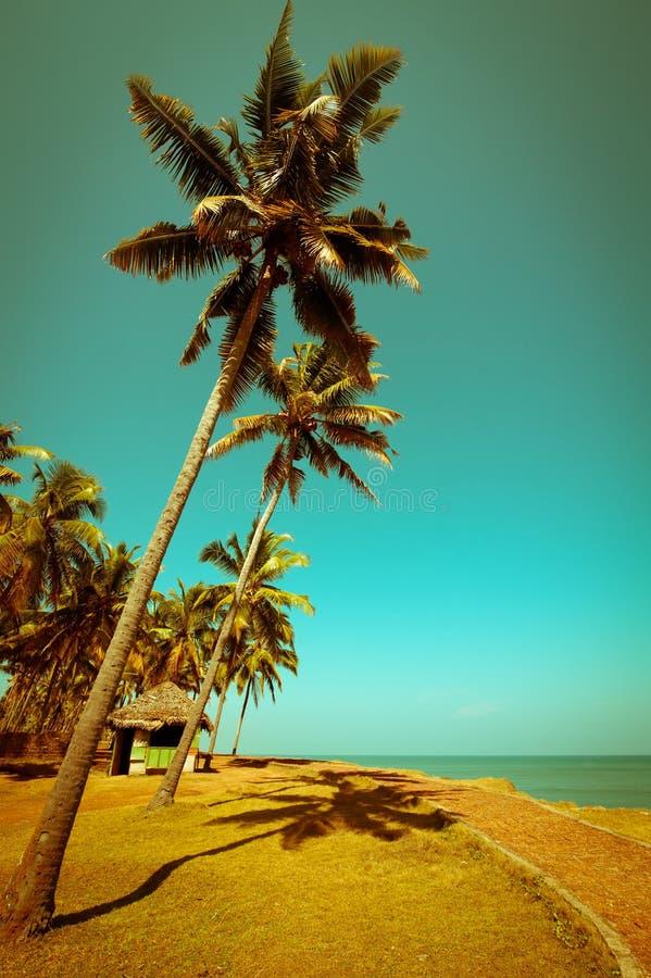 Dia ensolarado bonito na praia tropical fotografia de stock royalty free