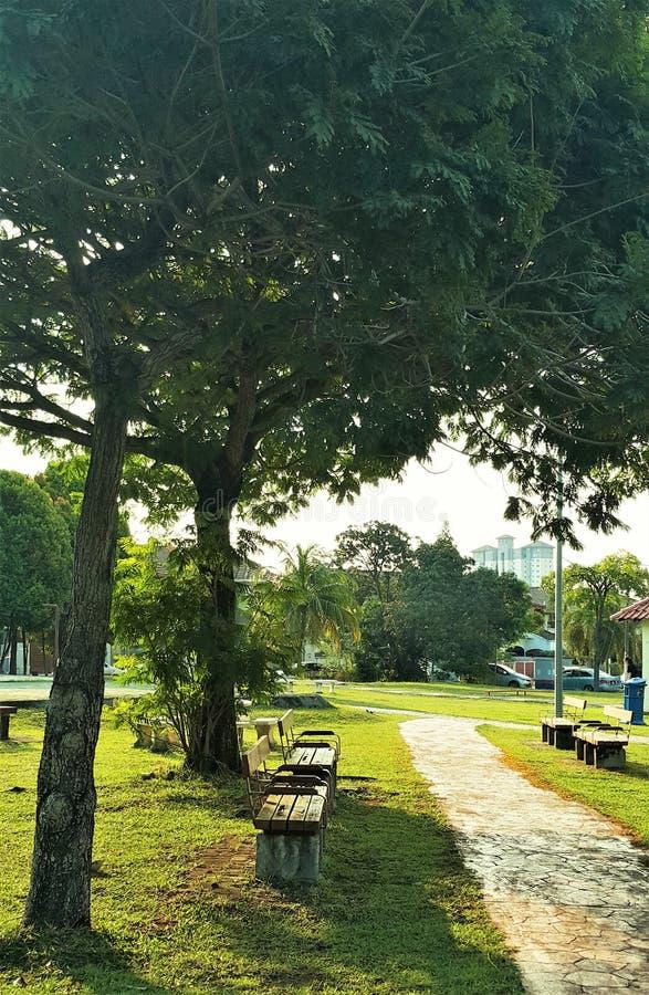 Dia ensolarado bonito nos parques exteriores imagem de stock