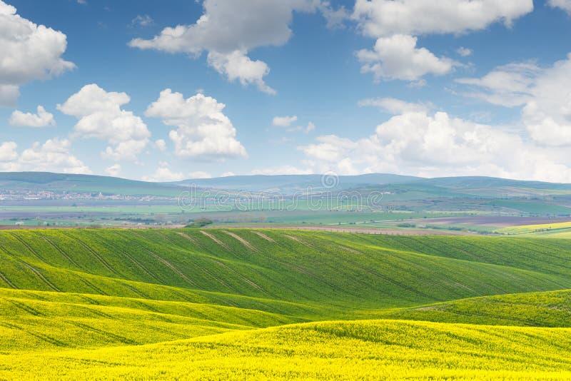 Dia ensolarado bonito, paisagem colorida imagem de stock