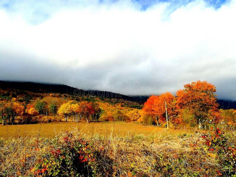 Dia ensolarado de surpresa do outono em França foto de stock