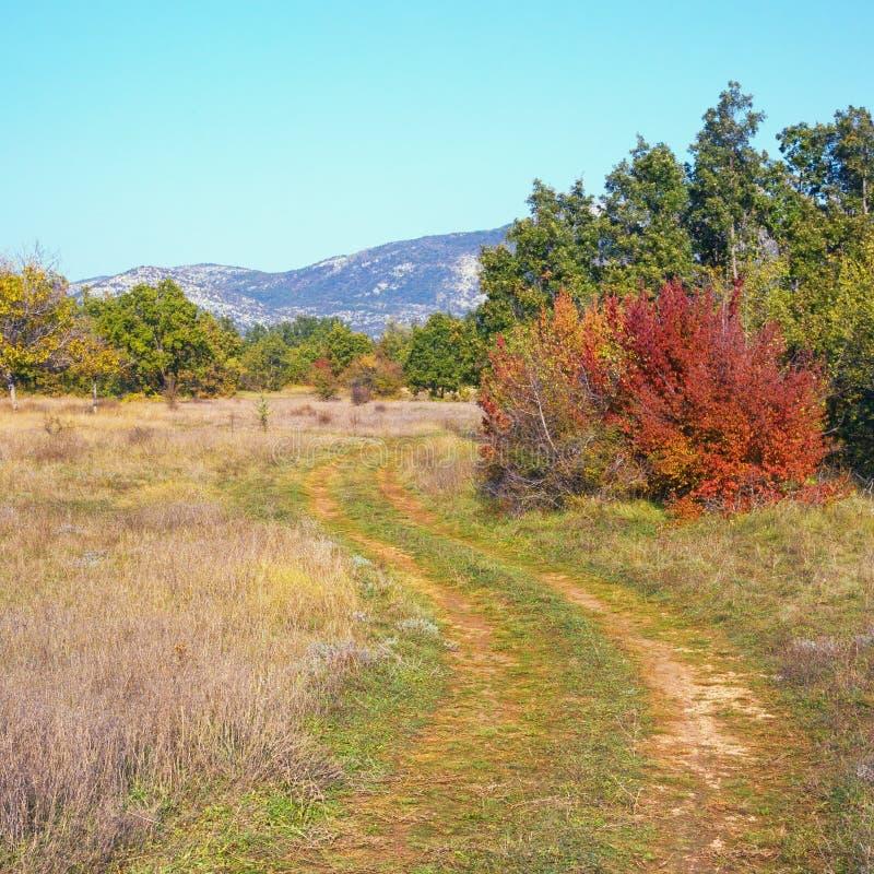 Dia ensolarado do outono no vale dos cumes do dinar B?snia e Herzegovina imagens de stock royalty free