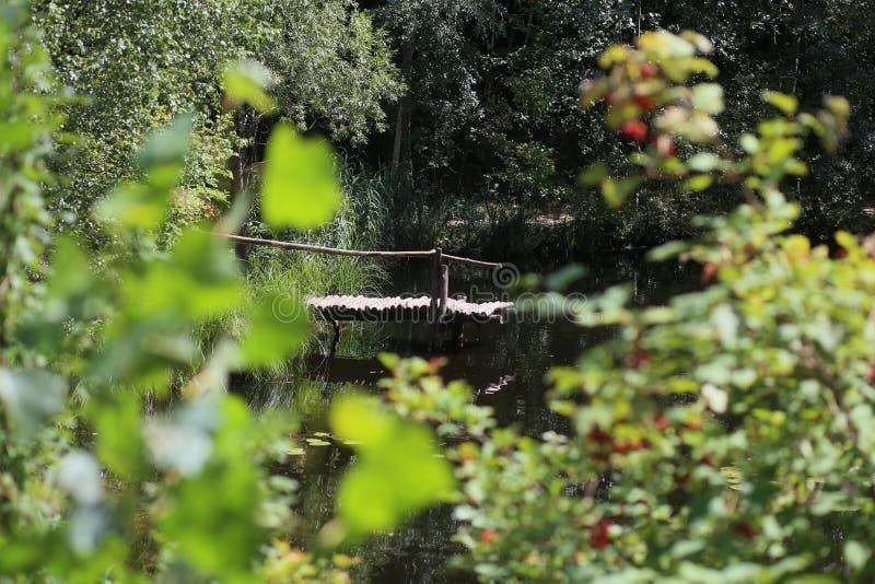 dia ensolarado do verão do lago da ponte de madeira foto de stock