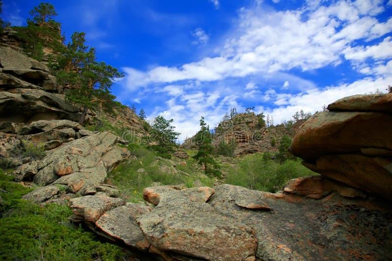 Dia ensolarado do verão nas montanhas foto de stock