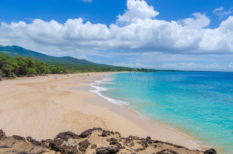 Dia ensolarado na praia grande, Maui, HI imagens de stock royalty free