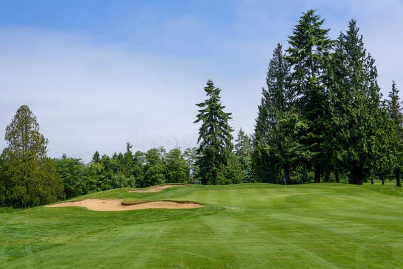 Dia ensolarado no campo de golfe, no fairway, no verde, e na armadilha de areia cercada por árvores fotografia de stock royalty free