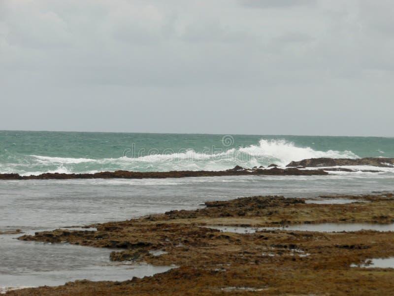 Dia nebuloso na praia de Porto de Galinhas fotos de stock royalty free