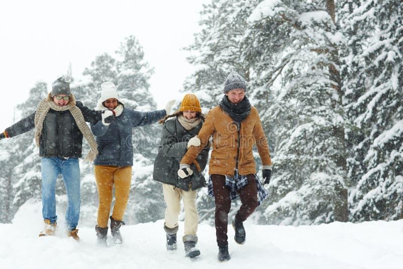 dia nevado imagem de stock