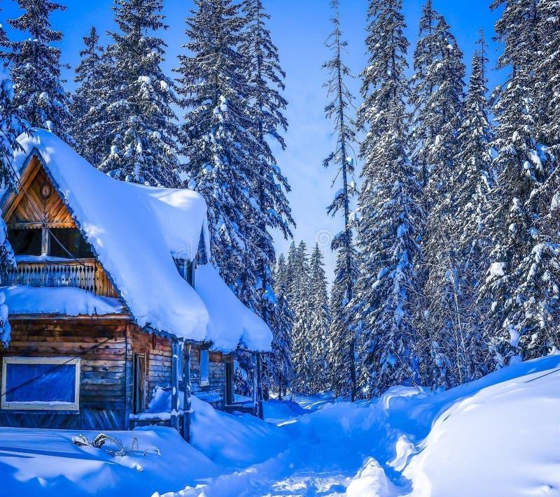 Dia nevado e ensolarado no ‡ do iÄ do ¡ de VlaÅ foto de stock