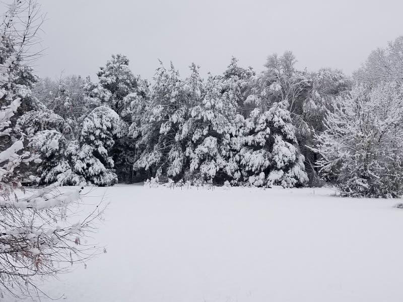 Dia nevado em montes apalaches fotos de stock royalty free