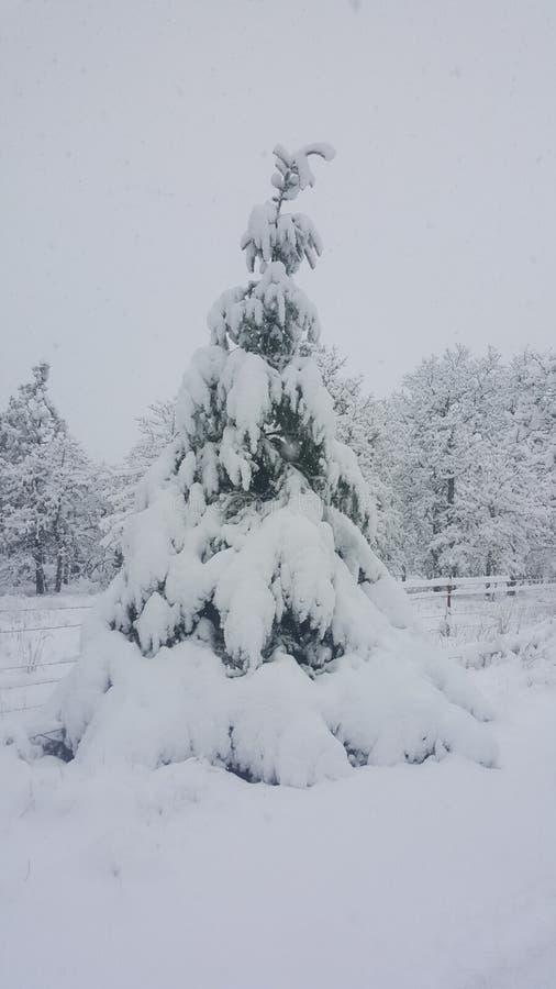 Dia nevado em Mosier Oregon imagens de stock royalty free