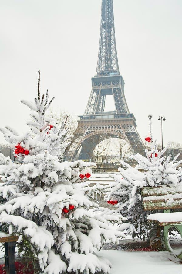 Dia nevado raro em Paris fotografia de stock royalty free