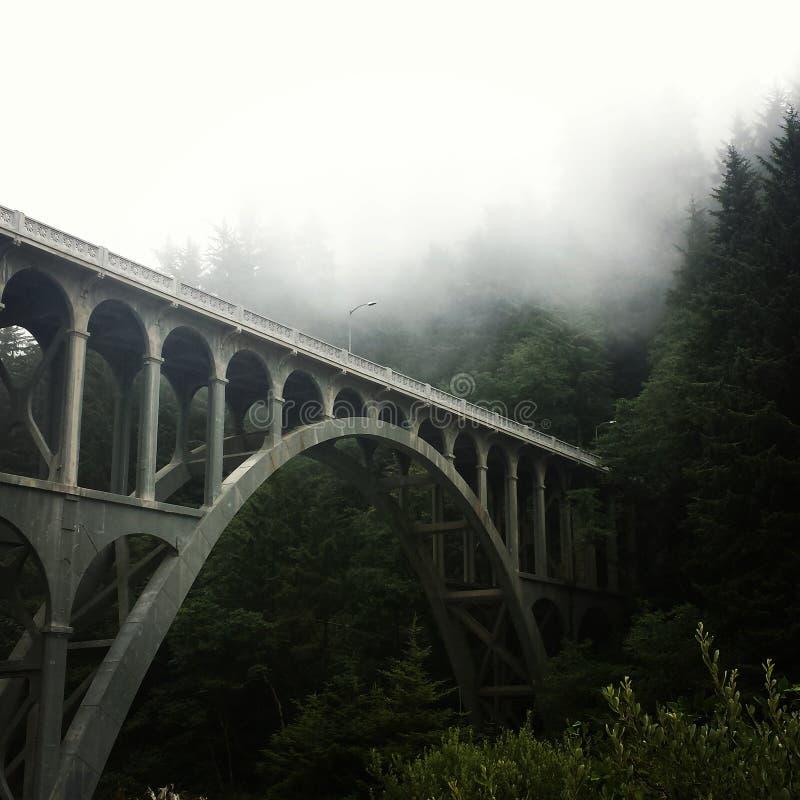 Dia nevoento da costa de Oregon fotos de stock royalty free
