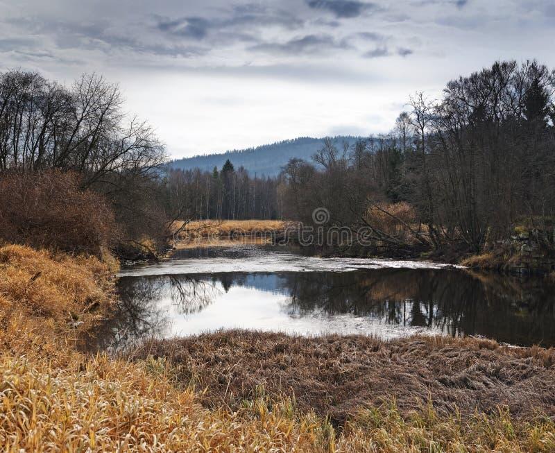 Download Dia Triste Da Queda Na Natureza Imagem de Stock - Imagem de foliage, fora: 16853341