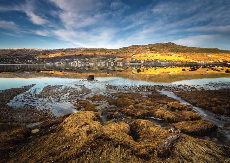 Dia ventoso pelo lago Jonsvatnet, luz do fim da tarde, área de Trondheim em Noruega fotos de stock