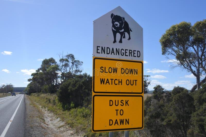 Diabeł tasmański drogowy podpisuje wewnątrz Tasmania Australia zdjęcie royalty free