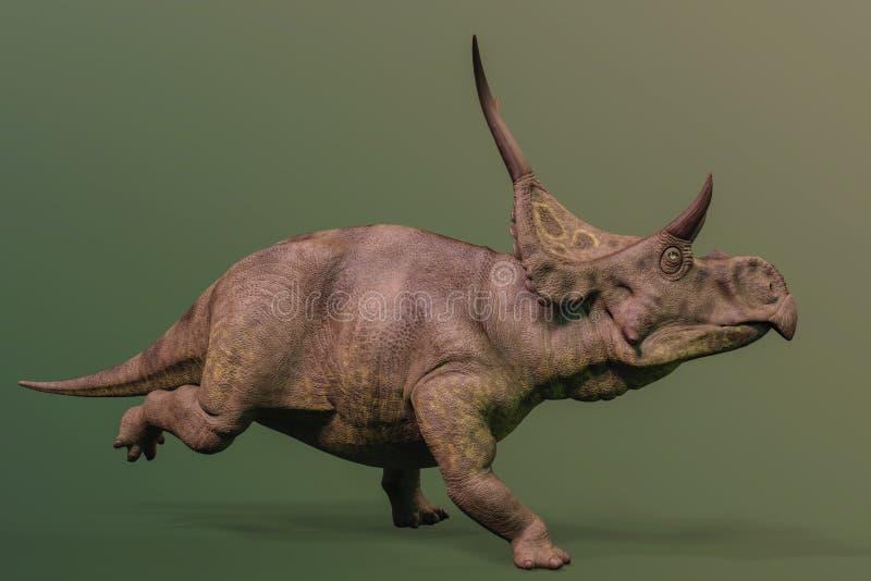 Diabloceratops sur le fond vert illustration libre de droits