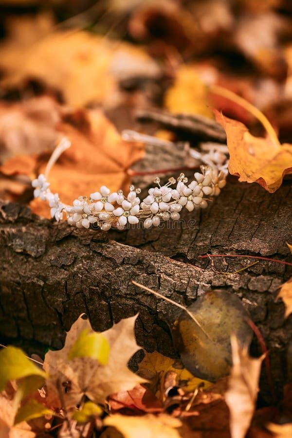 diadem Toebehoren voor de bruid tegen de achtergrond van de boomboomstam en het de herfstgebladerte kunstwerk De herfsthuwelijk royalty-vrije stock foto