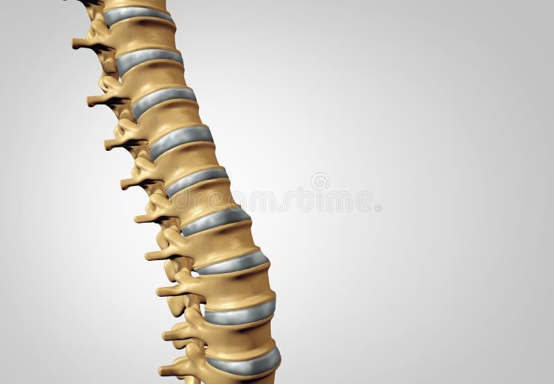 Diagnóstico de la espina dorsal ilustración del vector