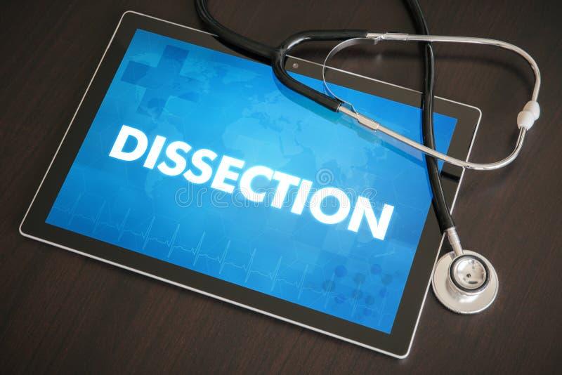 Diagnose der Zerlegung (gastro-intestinale Krankheit bezogen) medizinisch lizenzfreies stockfoto