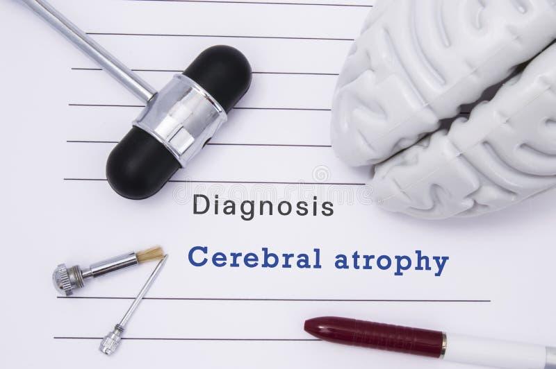 Diagnose van Hersenatrophy Het neurologische hamer en hersenencijfer ligt op een medische document vorm met een rubriekdiagnose v stock foto's