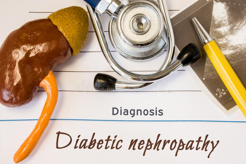 Diagnosen-zuckerkrankes Nierenleidenfoto Zahl der Niere liegt nahe bei incription der Diagnose des zuckerkranken Nierenleidens, U stockbild