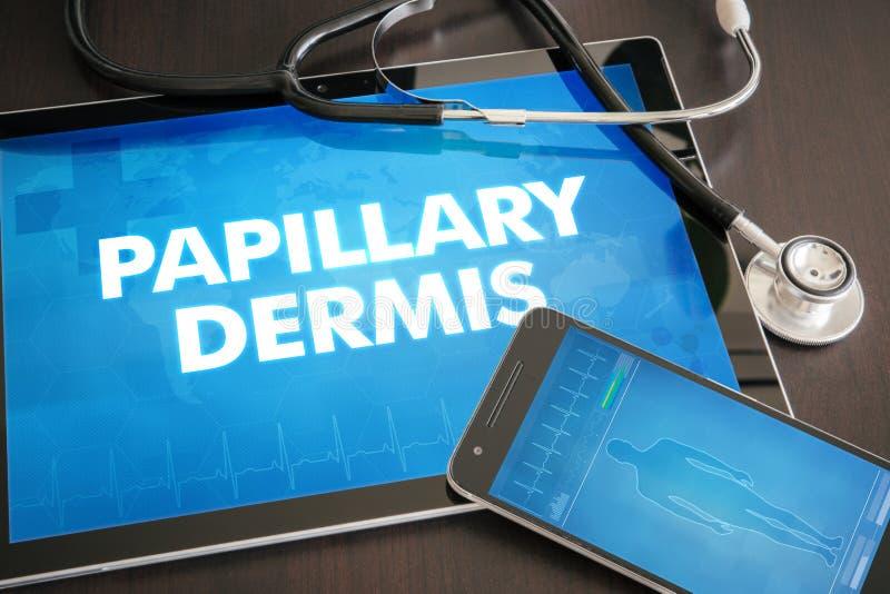 Diagnosi papillare c medica del derma (malattia cutanea riguardante) fotografia stock
