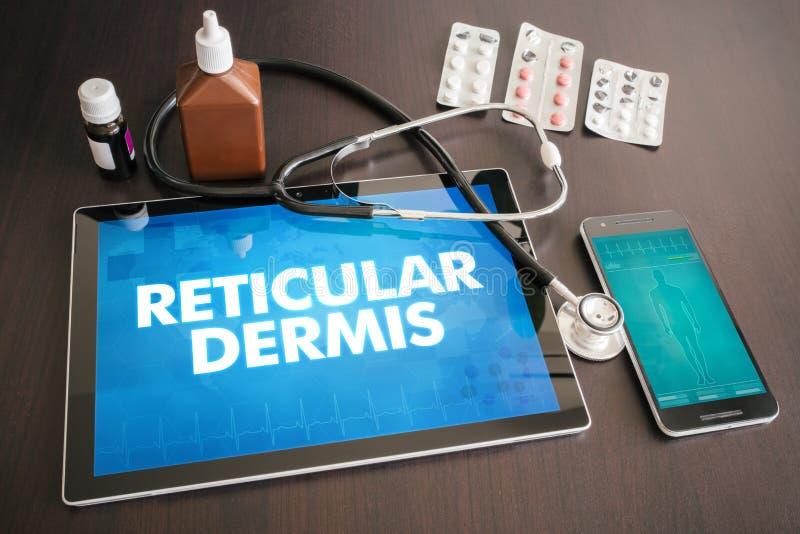 Diagnosi reticolare c medica del derma (malattia cutanea riguardante) illustrazione vettoriale