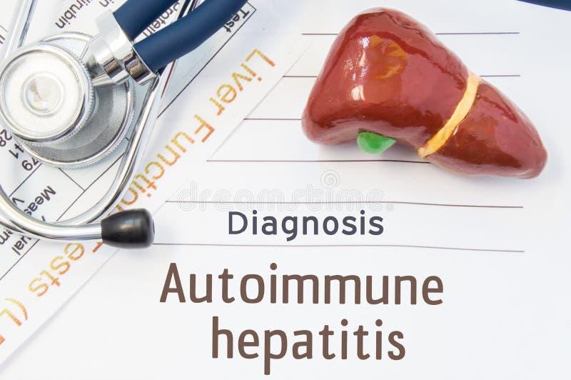 Diagnosis autoinmune de la hepatitis El modelo anatómico 3D del hígado humano está cerca del estetoscopio, resultados de los prue imágenes de archivo libres de regalías