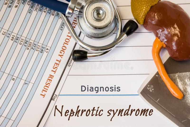 Diagnosis Nephrotic Syndrome photo. Figure of kidney lies next to incription of diagnosis Nephrotic Syndrome, ultrasound result, s stock photo