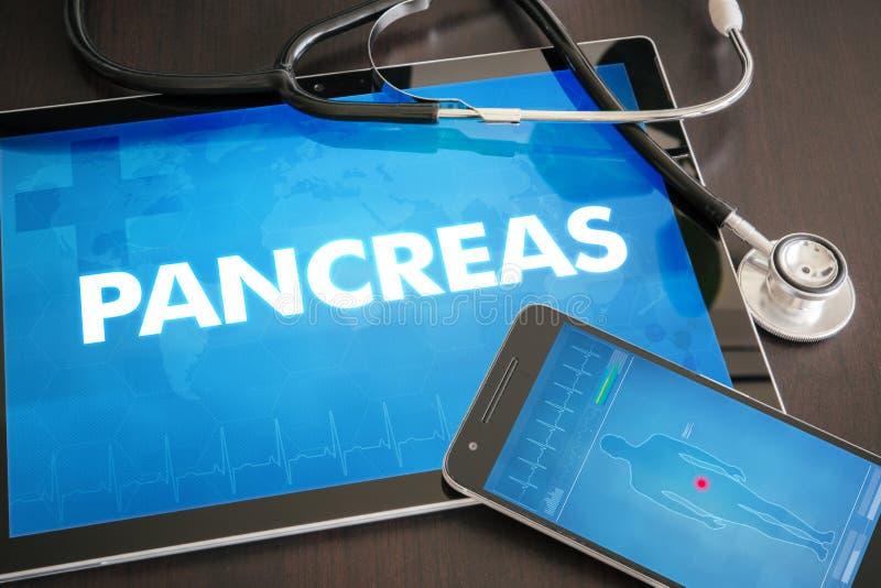Diagnosläkarundersökningen för bukspottkörtel (släkt organ för endokrin körtelsjukdom) lurar royaltyfri bild