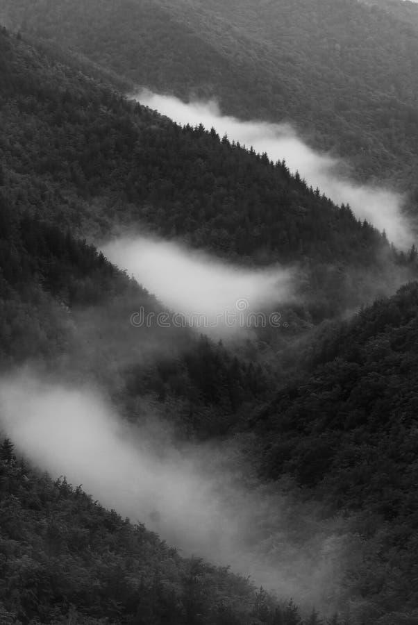Diagonaler Nebel lizenzfreie stockbilder
