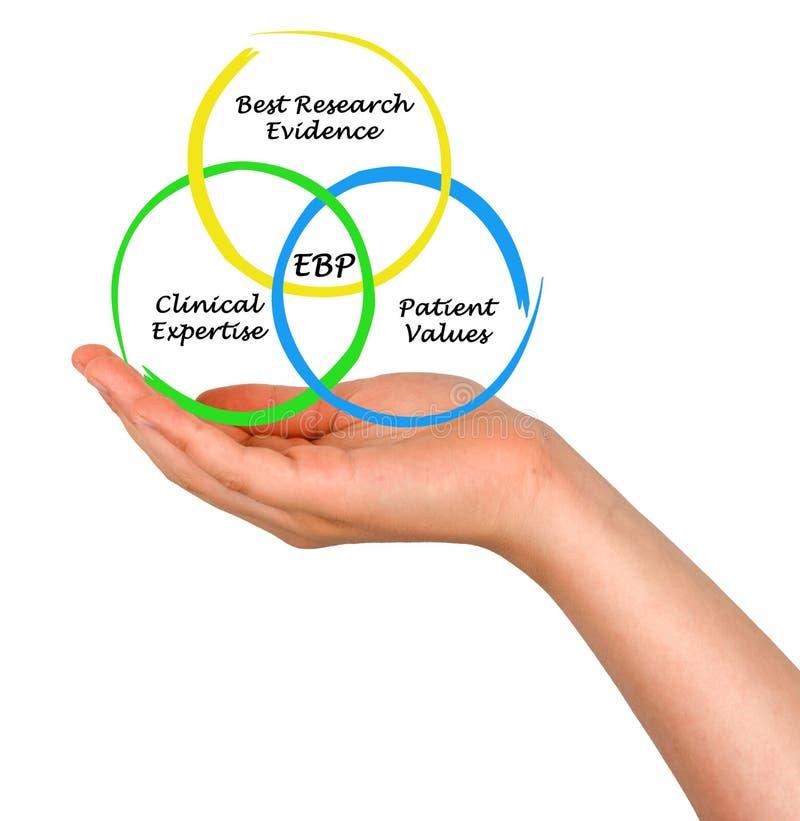 Diagram av EBP arkivfoton