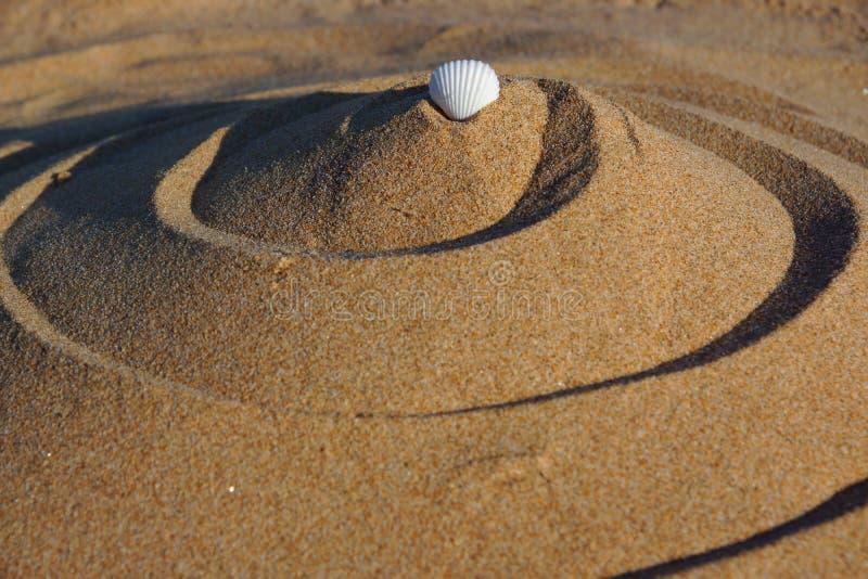 Diagram av guld- sand i form av en krullning med en vit cockleshell överst, harmoni och fred royaltyfri fotografi