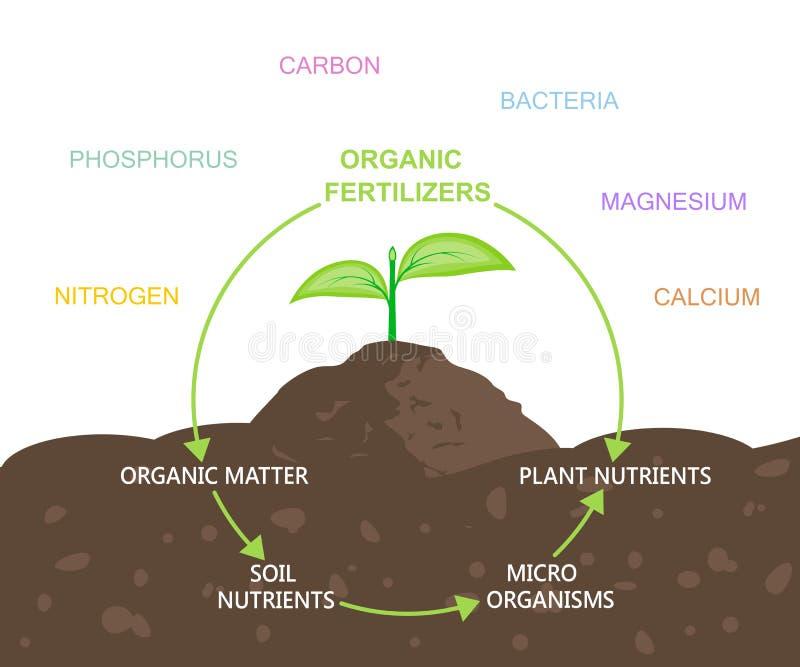 Diagram av näringsämnar i organiska gödningsmedel vektor illustrationer