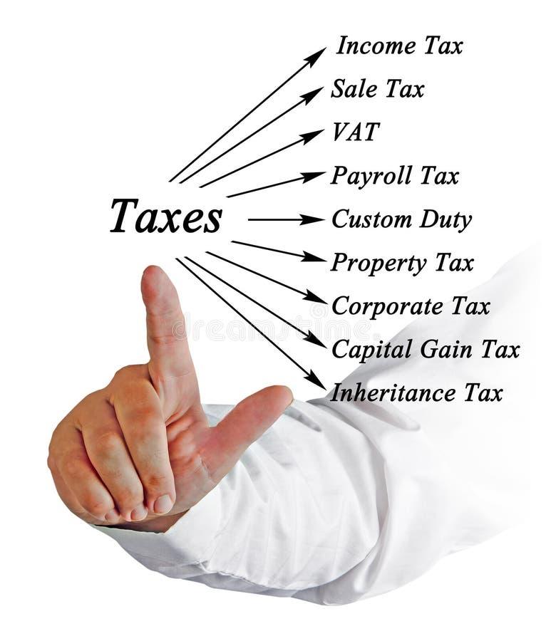 Diagram av skatter royaltyfri bild