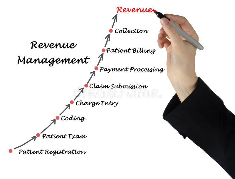 Diagram Celny zarządzanie zdjęcie royalty free
