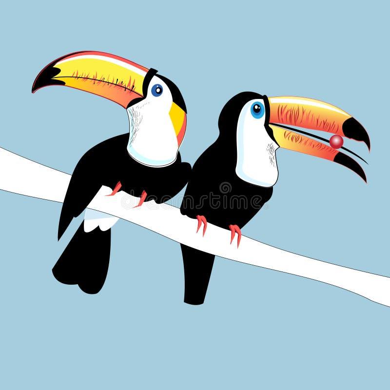 Diagram färgar roliga fågeltukan royaltyfri illustrationer