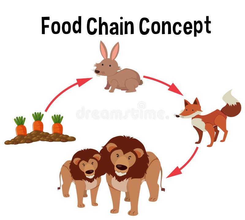 Diagram för begrepp för matkedja stock illustrationer