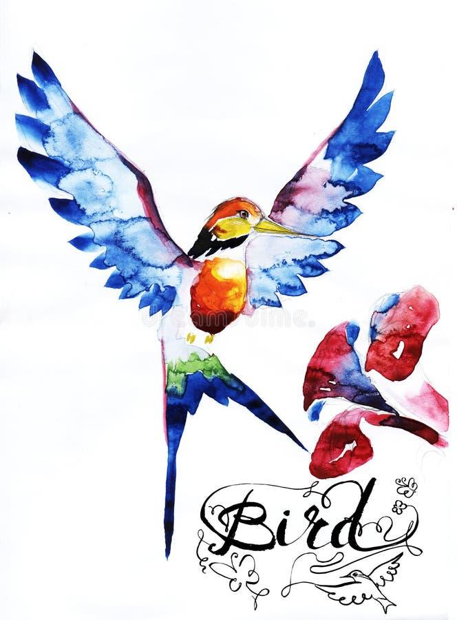 diagram för kolibrifågelsymbol, symbol, vattenfärgteckning, linje, royaltyfri illustrationer