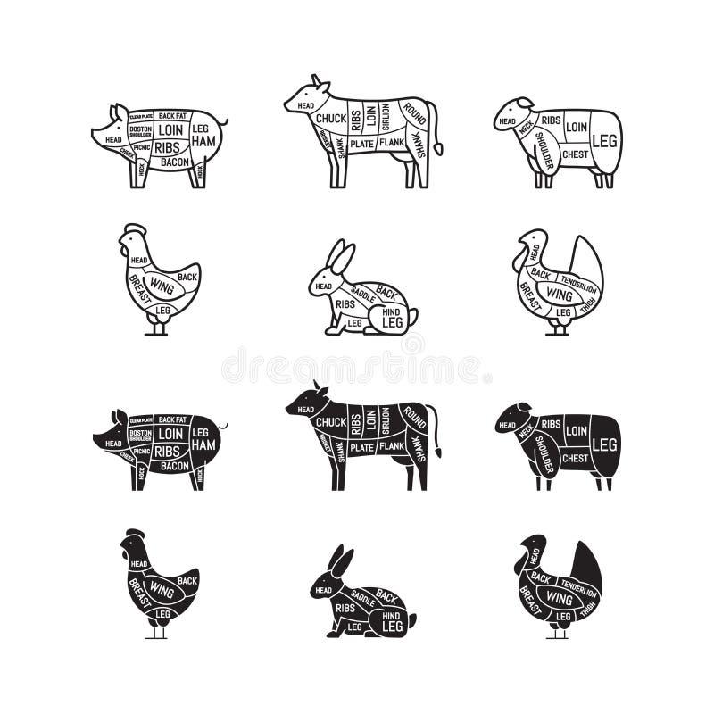 Diagram för slaktare shoppar Köttsnitt Djur kontur, svin, Co stock illustrationer