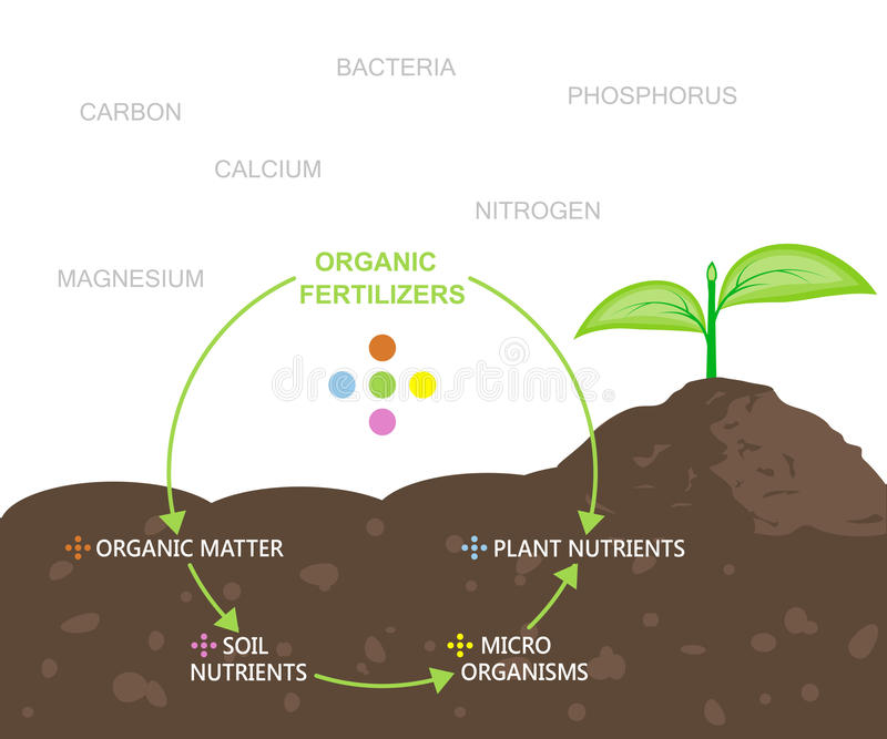 Diagram of Nutrients in Organic Fertilizers. Vector illustration flat design royalty free illustration