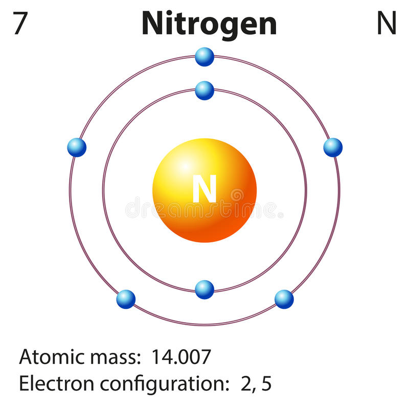 Diagram representation of the element nitrogen vector illustration
