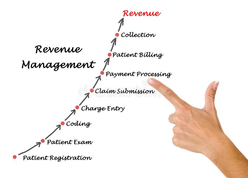 Diagram of Revenue  Management vector illustration